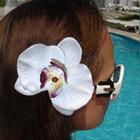 Большая орхидея на резинке или заколке