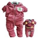 Спортивный велюровый костюм 0259