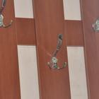Вешалка в прихожую компактная и удобная 52 см настенная вешалка альфа