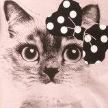 Модный новый свитшот с котиком