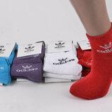 Носки женские «Adidas» размер 35-40