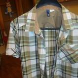 Рубашка DIVIDED р.s cotton - 100%