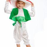 Прокат карнавальный костюм Киев-Борисполь костюмы грыбочков