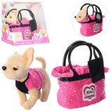 Собачка Кикки в гламурной сумочке. Все в наличии