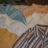 Модные блузки с длинным рукавом б/у