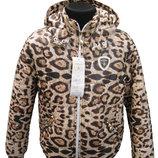 Демисезонная курточка для девочки тигровой расцветки, Тм Barbarris, 128 см.