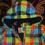 Новые яркие осенне-зимние куртки Topolino p.98-116 и Лупилу рост 86-92 см