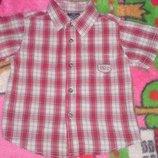 Faded Glory рубашка на мальчика из хлопка на 2-3 года