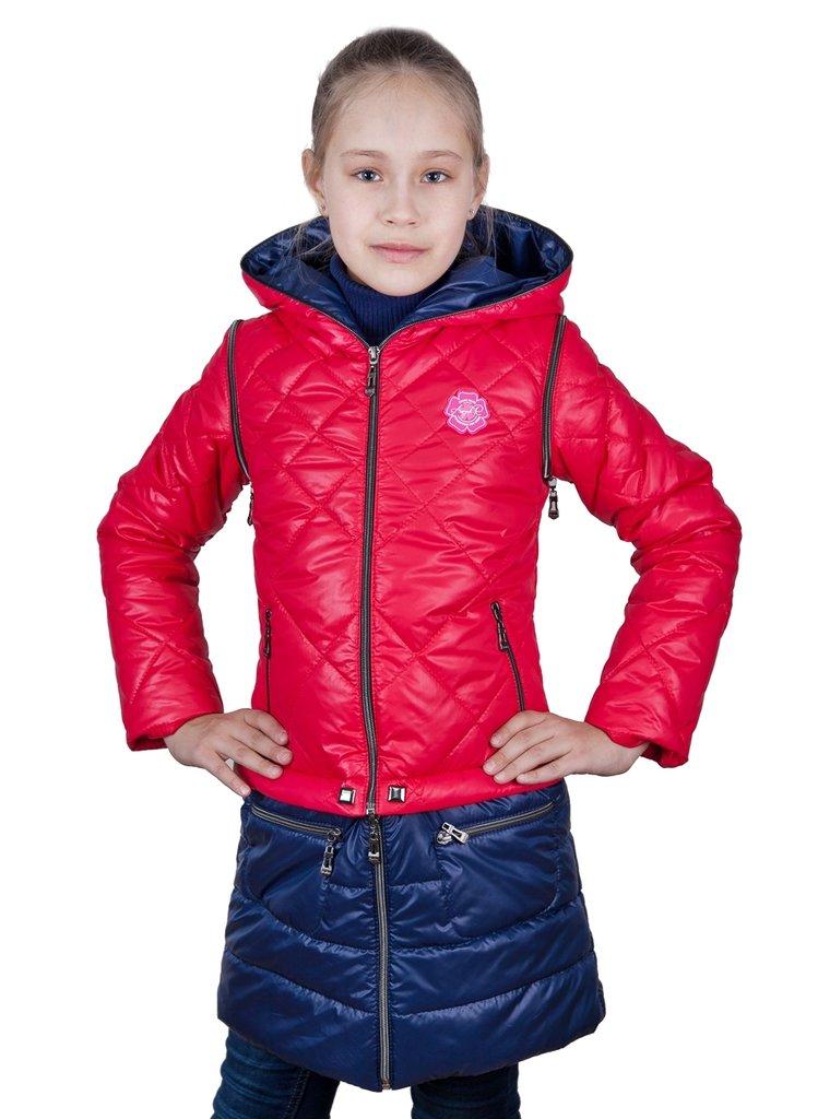 Девочка в красной куртке картинка для детей