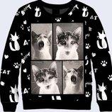 Коты Прикольные 3D Лучшая цена