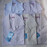 Рубашки мелк.клетки спокойн. расцветки для школы