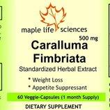 Убрать аппетит - Caralluma Fimbriata 500 mg. для снижения аппетита и похудения. Пробник.