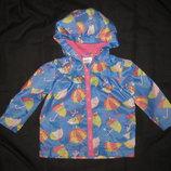 красивая куртка ветровка на 9-12 мес, дождевик