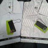 Белые рубашки школьнику, выбор