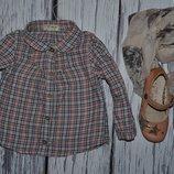 6 - 9 месяцев 9,5 кг Рубашка блузка блуза для маленькой модницы Next некст