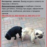 Помощь при вязке для крупных и мелких собак Зоотакси Срочный выезд инструктора кинолога