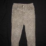джинсы скинни леопардовые на 1,5-2 года