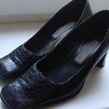 Женские черные туфли под рептилию