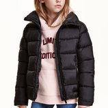 H&M Куртки в наличии 170 S