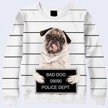 3D свитшот Bad dog Большой выбор