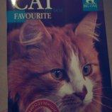 Дневник школьный Кошка Кот Кіт Котик Киця Щоденник шкільний канцт канцелярс канц школ шкіл дит детс