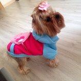 Одежда Толстовки новые для котов и собак