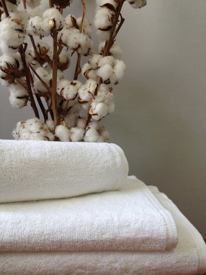 Махровое полотенце 70х140 см белого цвета без бордюра 420 г/м2.
