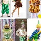 Прокат костюм картопля, картошка, цибуля, луковка, лук, буряк, свекла - Позняки