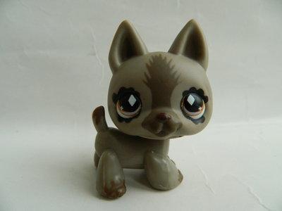 пет шоп, littlest pet shop, Hasbro, собака- Shepard, стоячка