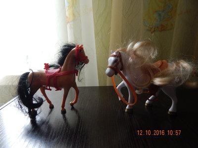 коник , конь , поні