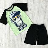 Комплект для мальчика шорты и футболка