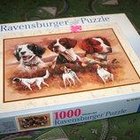 Пазлы на 1000 элементов с собаками