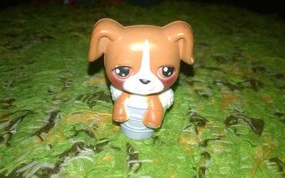 Игрушка собачка,щенок хасбро,Hasbrо,петшоп,Littlest Pet Shop