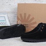 Ботинки топ-сайдеры мужские UGG Australia черные замшевые низкие на шнуровке