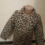 тигровая куртка ladybird 5-6 лет