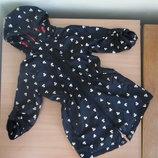 куртка детская 146 см. черная детская насыщенный Young Dimension Янг Дайменшн черный цвет утки