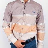 Модная стильная рубашка