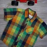 Рубашка Bluezoo 3-4 г 104 см Хлопок