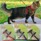 Поводок для кота/маленькой собачки, 3 цвета, новый