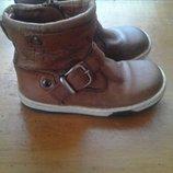 Демисезонные ботинки хайтопи 14,5 стелька