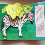 Африка Увлекательная книжка о животных с 3D картинками