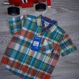 Рубашка Ted Baker 12-18v 86см