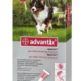 Адвантикс® для собак вес 10-25 кг 1 пипетка капли на холку от блох, клещей и комаров