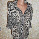 Блузка Леопардовая Сжатка Р.64