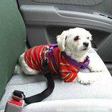 Ремень безопасности для собак и котов в автомобиль