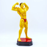 Награда спортивная Бодибилдинг статуэтка наградная бодибилдер C-2245-A8 27х14х12см
