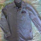 Рубашка в мелкую синюю клеточку р.146