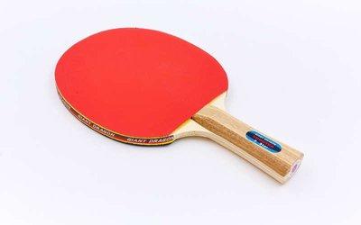 Ракетка для настольного тенниса Gd Energy Series MT-5685