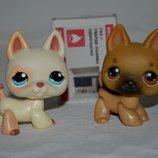 Петс шопы pet shop игрушки зоомагазин Littlest pet shop LPS стоячка с магнитом
