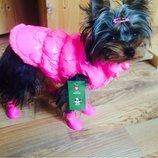 Яркий теплый жилет на меху для собак XS - 3XL